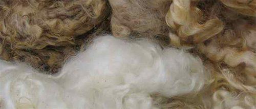 Geheimnisvolle Wolle