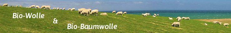 Schafe grasen auf einer grünen Weide am Meer